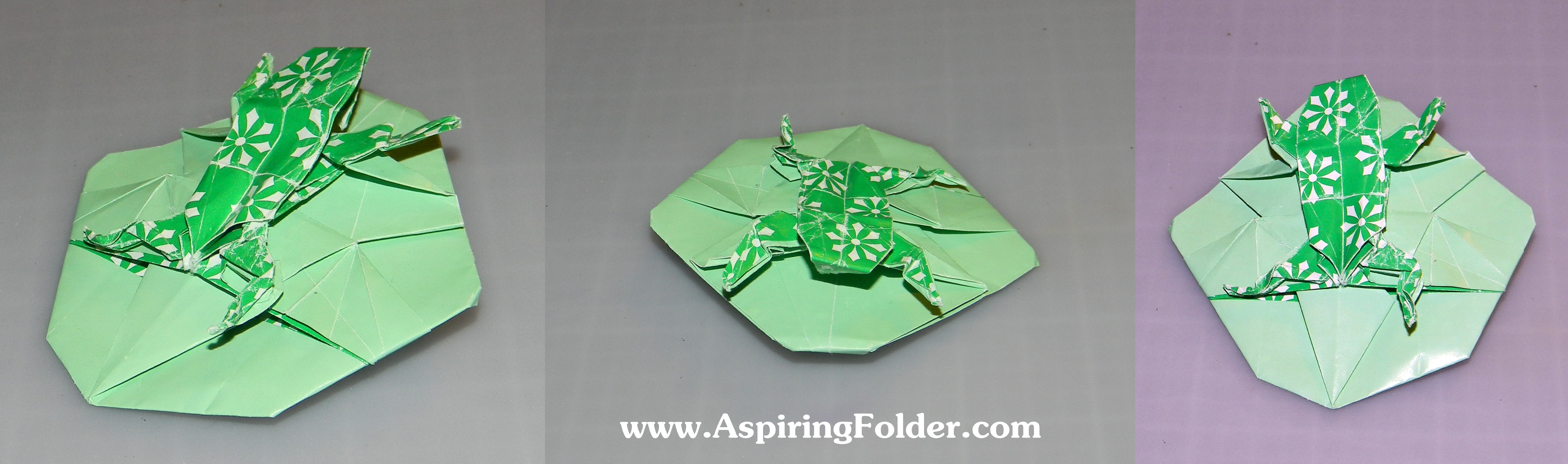 Frog Lily Pad Craft a Frog on a Lily Pad With