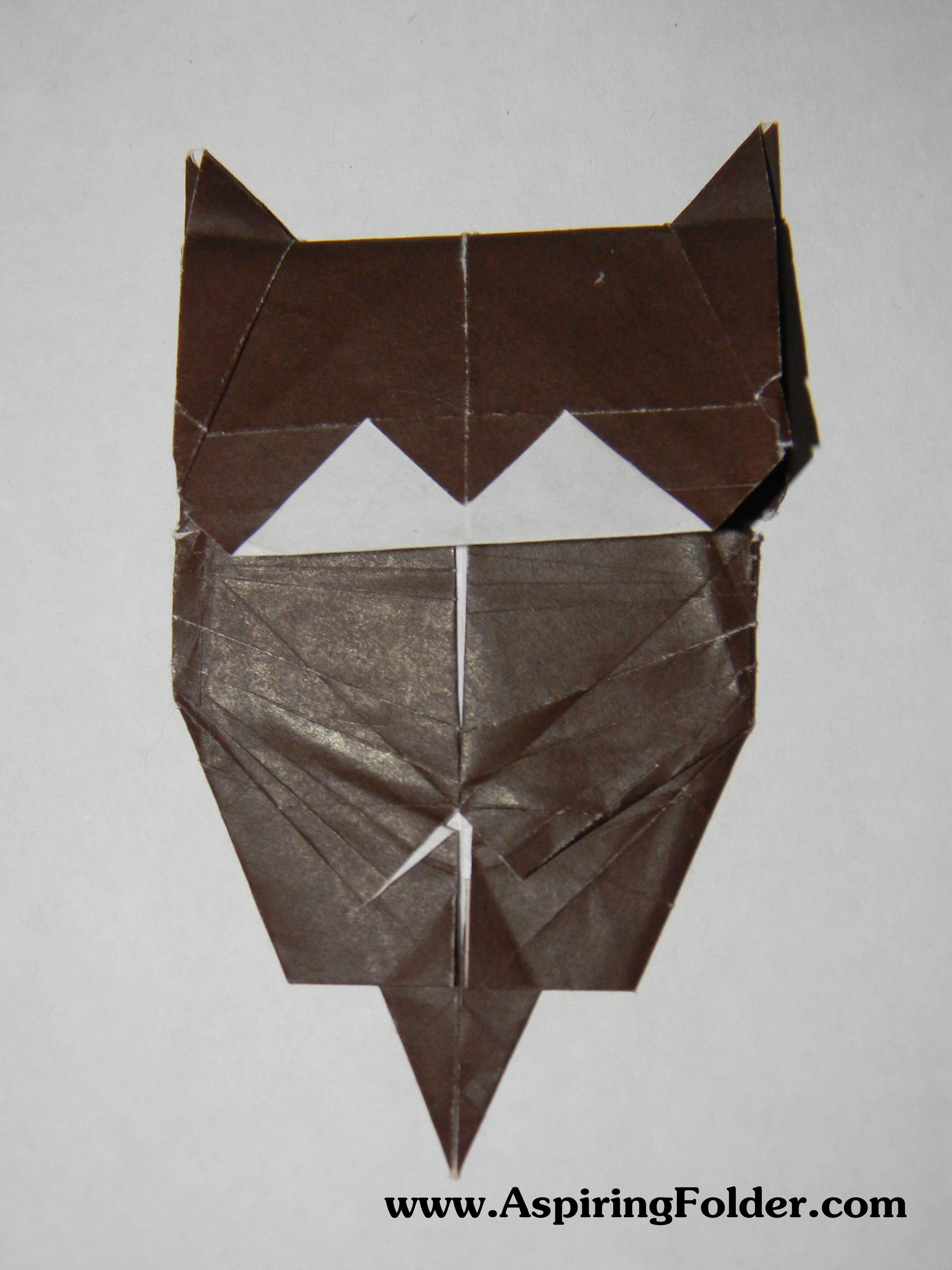 bengal cat pennsylvania