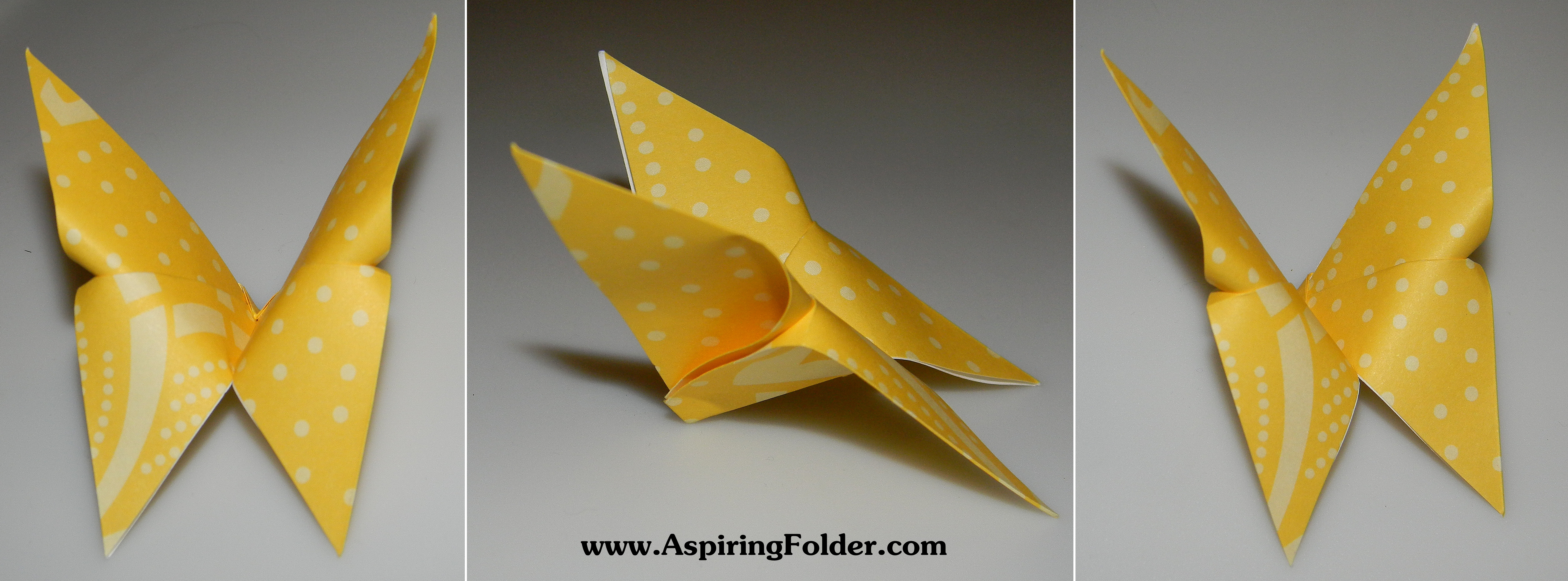 Origami Butterfly | Aspiring Folder - photo#39