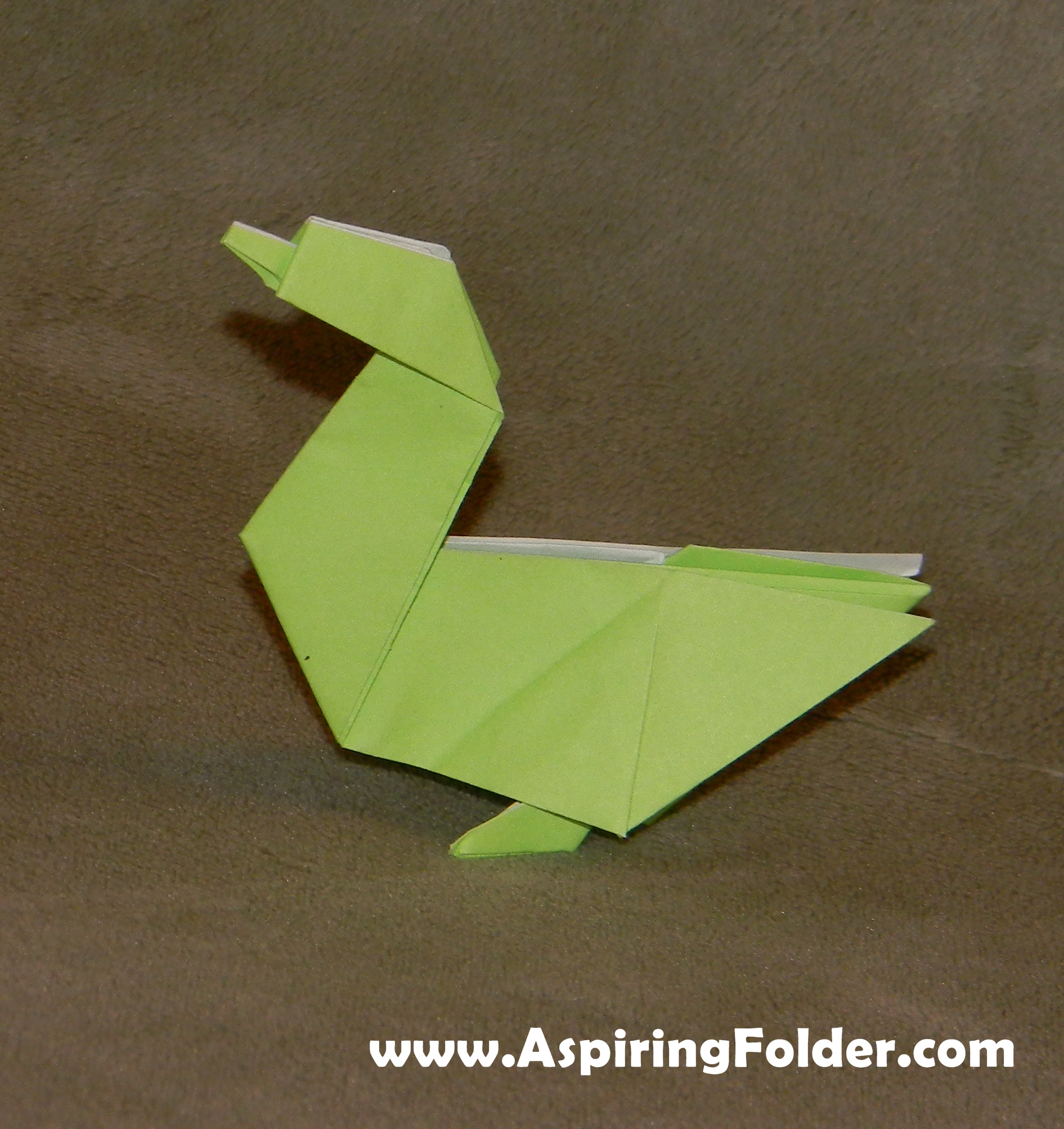 50 Hours of Origami  Gilads Origami Page
